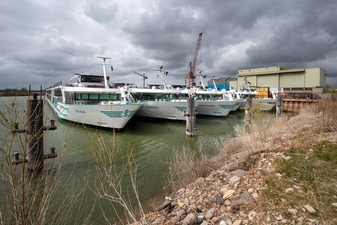 In de haven van Dodewaard ligt een deel van de vloot met riviercruiseschepen van de Zwitserse rederij Scylla AG.