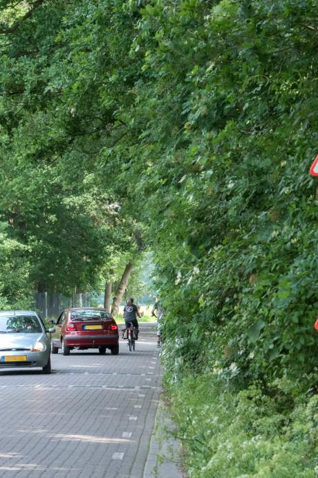 Einde aan gekibbel over dassenpassage Harderwijk in Ermelo