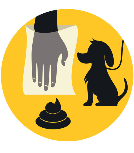 Geen meerderheid voor gratis hondenpoepzakjes in Hengelo