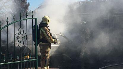 VIDEO. Hevige brand vernielt auto én garage op Termolen