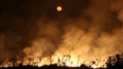 Oostenrijks parlement verzet zich tegen Mercosur-akkoord wegens Braziliaans milieubeleid