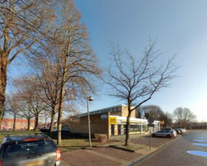 Drie bomen langs de Lange Nering worden verhuisd naar De Deel in Emmeloord.