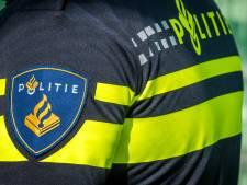 Winkelpersoneel overmeestert dieven in Zwolle