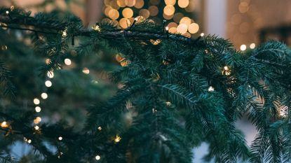 Gratis ophaling kerstbomen