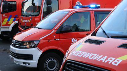 E19 in Minderhout even versperd... door omgevallen verlichtingspaal