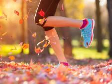 Begin maar vast met trainen: De halve en kwart marathon van Cranendonck gaat door