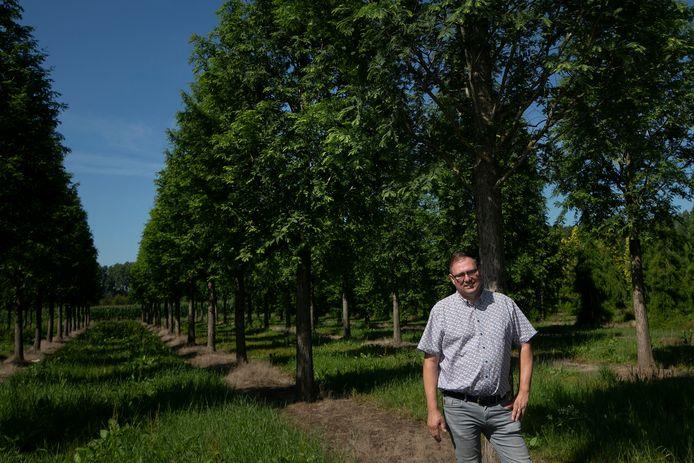 Sint-Oedenrode Pieter van den Berk bij de toekomstboom Metaseqoia glyptostroboides 'Sheridan Spire'.