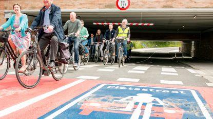 Eerste fietsstraat in Temse geopend