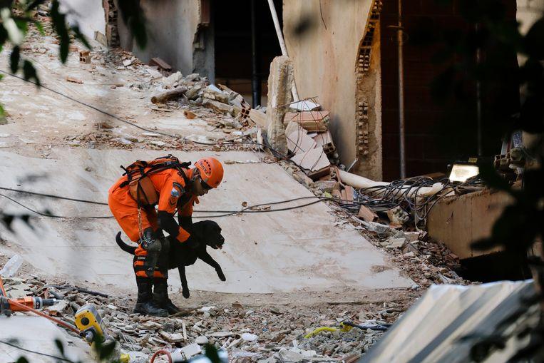 Een brandweerman zoekt met een speurhond naar overlevenden.