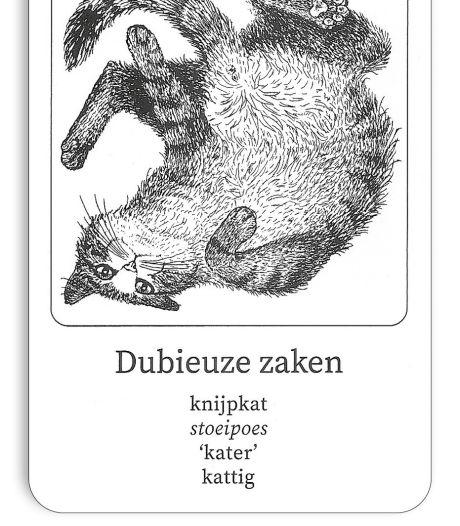 Gemist? Man dreigt met mes in Delft en kunstenares blaast poezenkwartet nieuw leven in