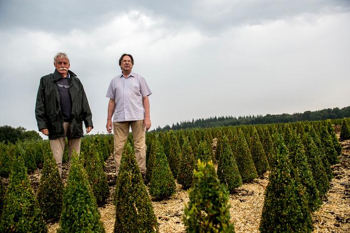 Robbert van Duin (rechts) en Henk van Kessel op het perceel dat volgens de gemeente Epe geschikt is voor grootscheepse kerstboomteelt.