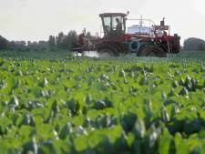 Landbouwgif mogelijk gevaarlijker dan gedacht: groot onderzoek naar risico's