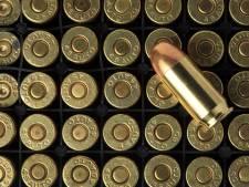 Politie tast in het duister over 'geweerschoten' in omgeving Moleneindplein in Vught