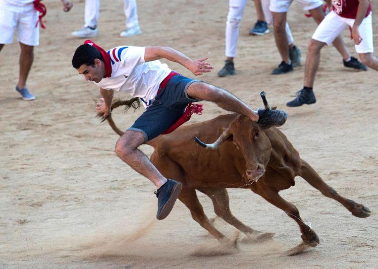 Na twee jaar is het stierenvechten terug toegelaten op Mallorca.