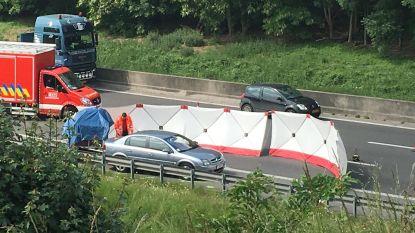 Man sterft na aanrijding op pechstrook van E19 in Mechelen