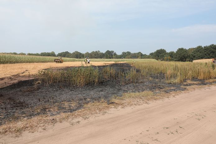 Buitenbrand aan de Koningsweg in Oss