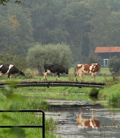 De hand van Brussel: landbouw in de regio voelt de druk van Europa