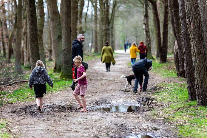 De meeste mensen gedragen zich volgens boswachter Marcel Dellink goed in de bossen in de Achterhoek (archieffoto).