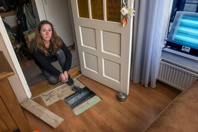 Gozina Schreuder heeft de door haar doorgezaagde laminaatplanken nog maar weer eens weggehaald. Onder de vloer liggen rattenvallen. In de vensterbank de grote uv-lamp om de vliegen te vangen.