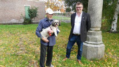 De hond uitlaten zonder leiband kan binnenkort in hartje Deinze: achterste deel Kaandelpark wordt hondenuitloopweide