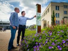 Papendrechtse bijenflats moeten bij tevreden houden: 'Ze zijn onmisbaar'