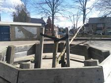 Stek van Anne Frankboom in Doesburg omver getrokken