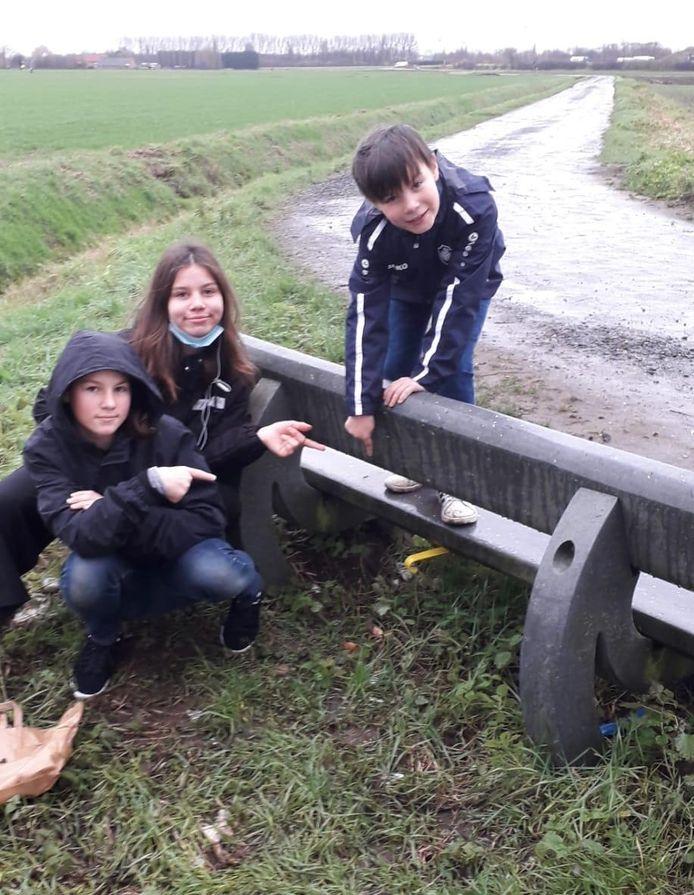 Familie De Schutter vond de eerste schoenlepel onder een zitbank achteraan de velden van FC Patro in Hoevenen