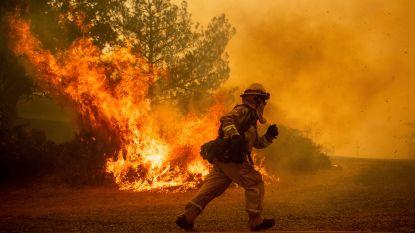 Een flesje bier kan al genoeg zijn om brand te veroorzaken: dit moet je weten over natuurbranden