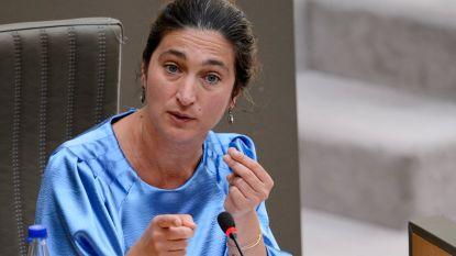 Minister van Toerisme Demir wil met druktebarometer toeristen in Vlaanderen spreiden