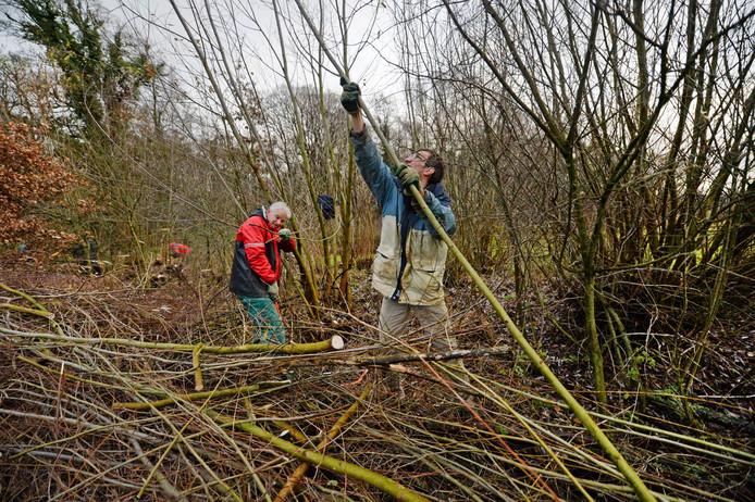 Zwaar werk, maar dat hebben vrijwilligers van natuurwerkgroep EnHOe graag over voor de boomkikker en de kamsalamander.