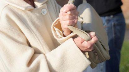 Dief steelt handtas uit auto terwijl bestuurster aanschuift om parking te verlaten