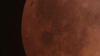 Zag u ook een kleine lichtflits tijdens de maansverduistering? Dan was u getuige van een primeur