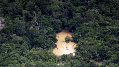 Brazilië handhaaft mijnbouwverbod Amazonegebied