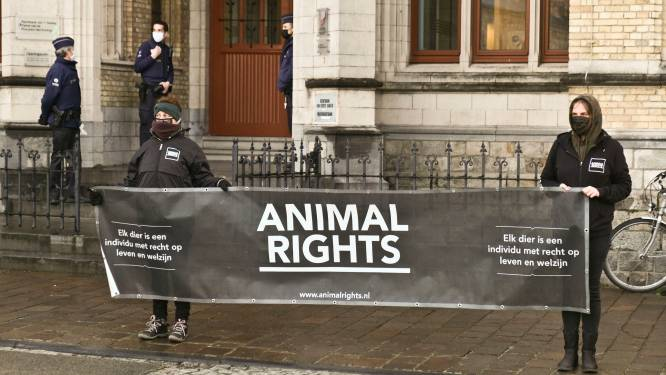 Stil protest van Animal Rights aan Ieperse rechtbank naar aanleiding van rechtszaak tegen slachthuis Verbist