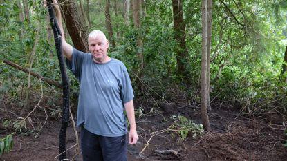 Bewoners Jagersdreef verontrust na reeks brandstichtingen in sparrenbos