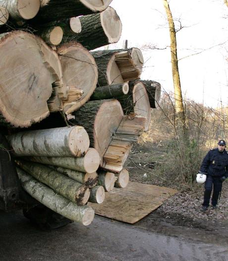 Nieuwe petitie tegen bomenkap in Het Gooi, nu tussen Hilversum en Hollandsche Rading