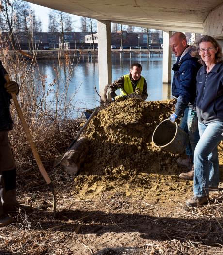 Liefhebbers ijsvogel leggen broedplaatsen aan in Terwijde: 'We hopen dat ze deze als nest kiezen'