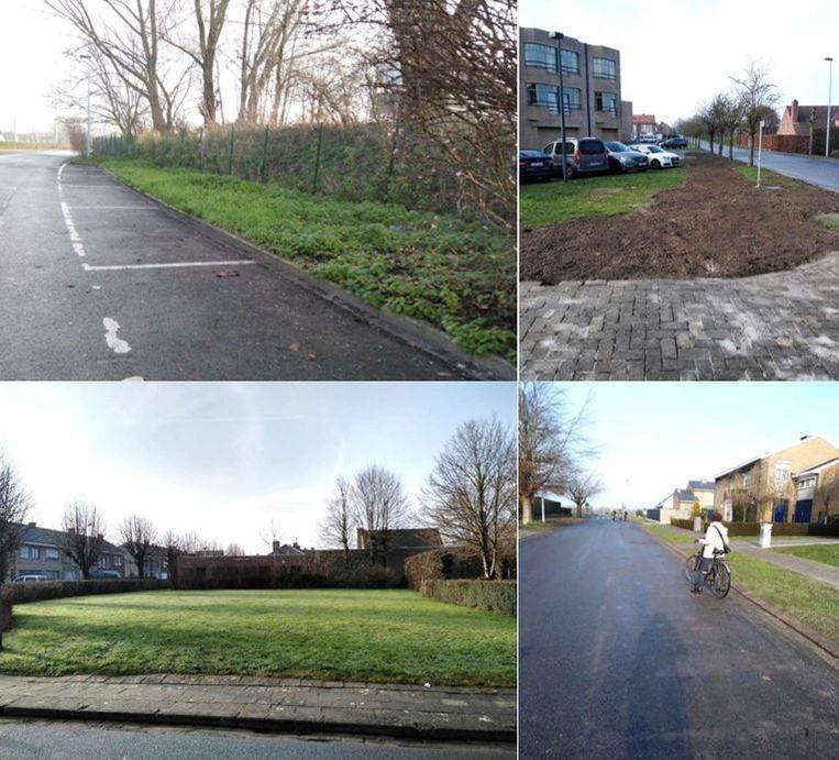 Op verschillende locaties in het centrum van Tielt kunnen er volgens Natuurpunt extra bomen worden aangeplant.