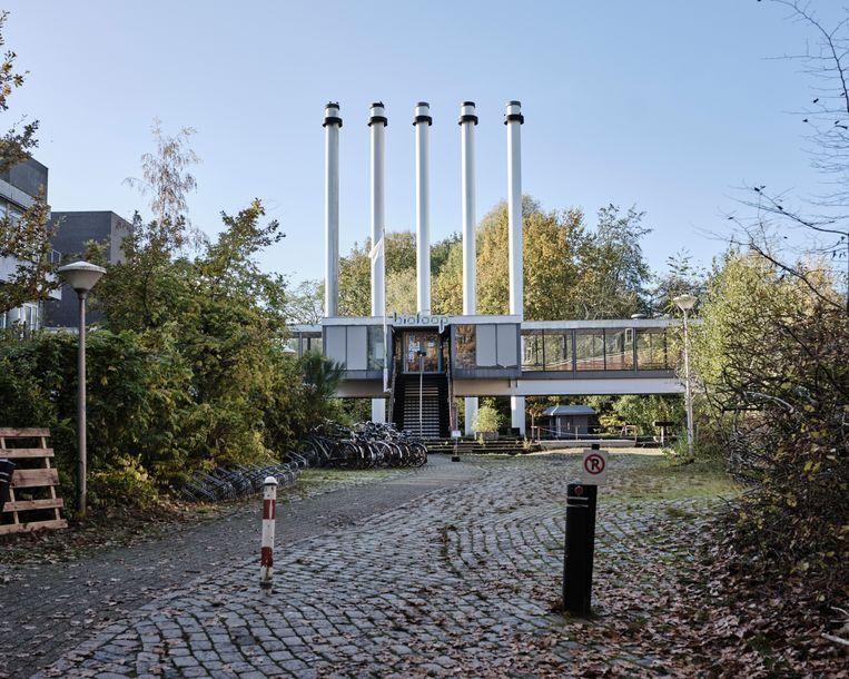 Het terrein van woongemeenschap de Biotoop in Haren, waar Sabine van den Berg woont met haar gezin. Beeld Erik Smits