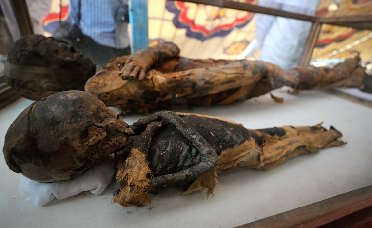 De twee gevonden mummies.