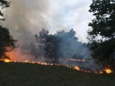 Grote heidebrand Vorden snel onder controle