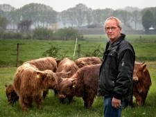 Getroffen boer uit Someren-Eind na aanval wolf: 'Hooglanders zijn mijn visitekaartje'
