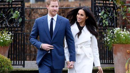 PORTRET. Harry en Meghan: het koppel dat het Britse koningshuis op stelten zette
