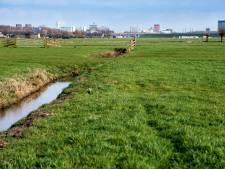 Uitwerkingsgroep voor duurzame energie in polder Rijnenburg spat uiteen