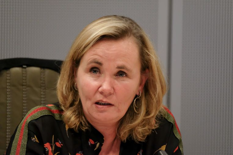 Vlaams minister-president Liesbeth Homans.