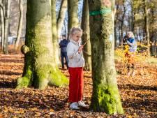 Meteen al actie tegen kap van 800 bomen in het Arnhemse Park Klarenbeek