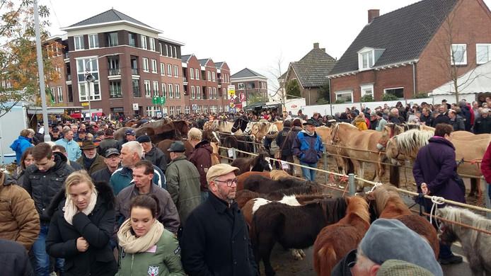 Paarden en mensen zover als je kunt zien.