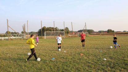 Fusie voetbalclubs: nog veel vragen