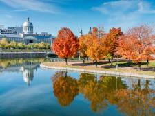 22,4 degrés au lieu des 7 degrés habituels: Montréal bat tous ses records