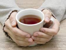 Bewoners zien theetuin in Bemmel niet zitten
